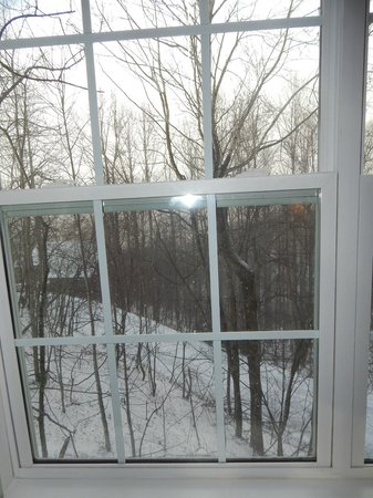 The Inn at Crestwood: view from living room in villa room 403