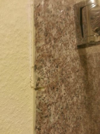 Americas Best Value Inn & Suites-Bush Int'l Airport : cracked, unsealed marble in tub