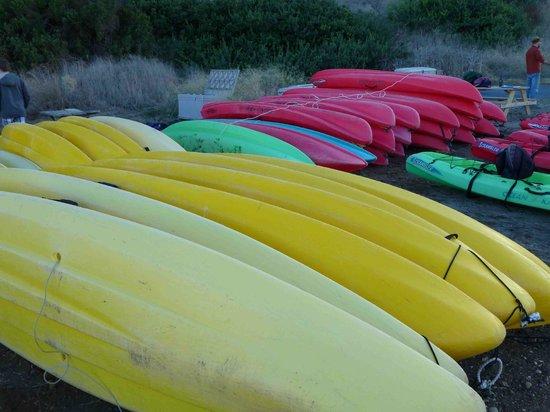 Santa Barbara Adventure Company: SB Adventure Co's base camp on Santa Cruz Island