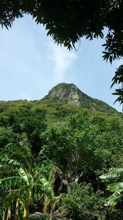 Pitons: Yup- you're climbing THAT!