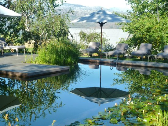 Angala Boutique Hotel and Guest House: The beautiful little Eco pool, stunning with supberb mountain views