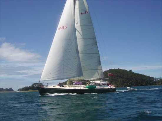 Te Vaka Day Sail: Sailing in the Bay of Islands