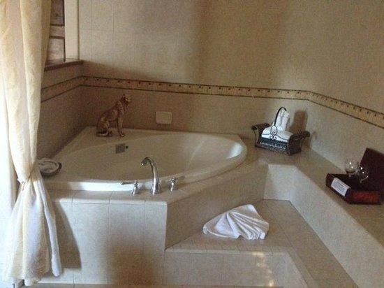 The Eagle Inn : jacuzzi tub