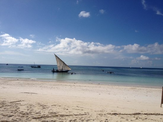 Union Beach Bungalows: Dhow boat sailing