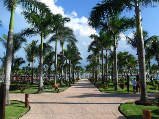 Barcelo Maya Colonial : heading to the beach