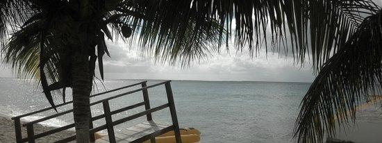 Nachi Cocom Beach Club & Water Sport Center: View from the beach