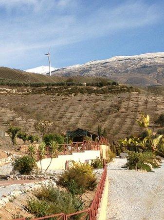 La Finca del Castillo Arabe : Wonderful views