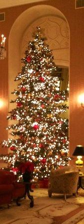 InterContinental Mark Hopkins San Francisco: Gorgeous lobby Christmas Tree
