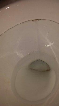 Auberge Viceroy : Room 101 toilette