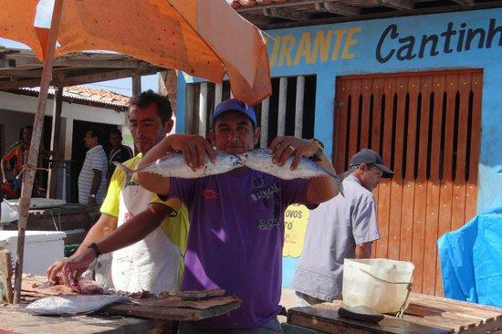 Mercado de Peixes em Raposa