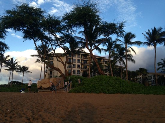 The Westin Maui Resort & Spa, Ka'anapali : Looking back at the hotel from the beach