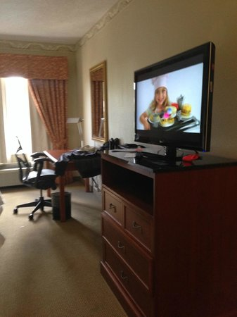 Hilton Garden Inn Ft. Lauderdale SW/Miramar: TV and desk in room