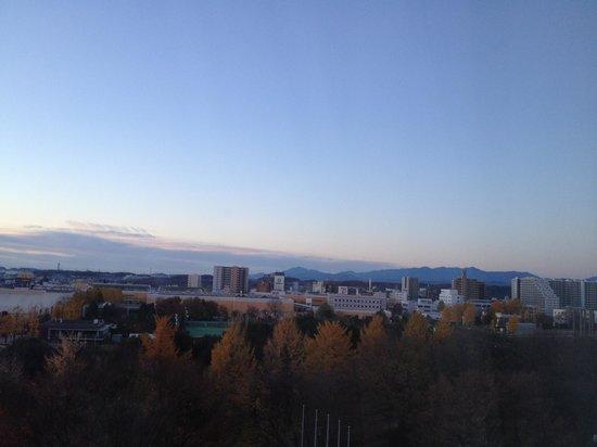 Forest Inn Showakan: 窓からの風景です