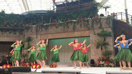 Spa Resort Hawaiians: hawaiannsyou