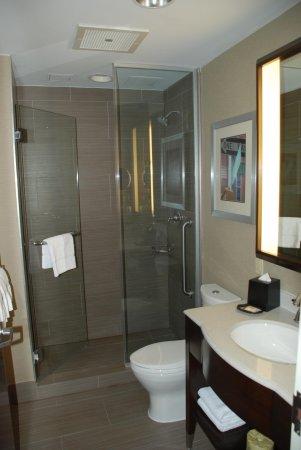 Sheraton Brooklyn New York Hotel: Simple bathroom, nice shower