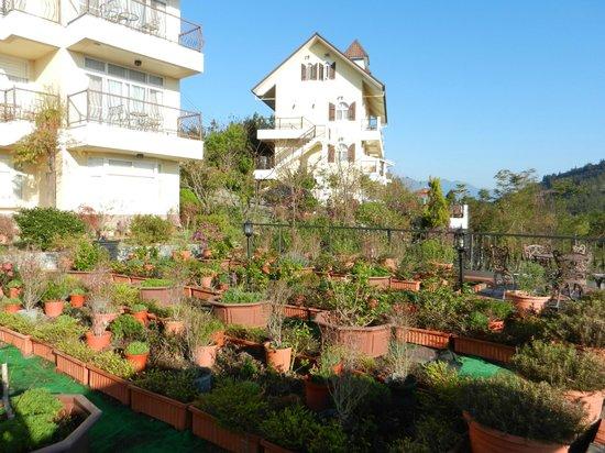 Tsing Ching Baiyun: different building of the resort