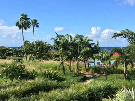 Four Seasons Resort Nevis, West Indies: From our room