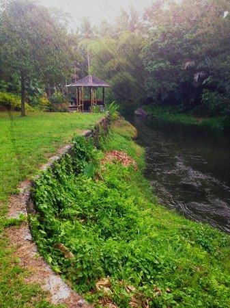 Villa Semana : the river