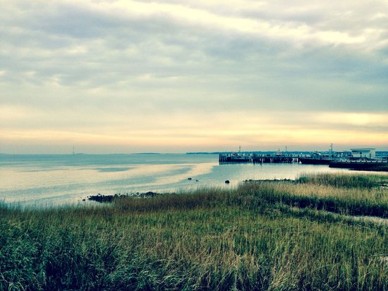 Riley Waterfront Park: Such a beautiful walk...