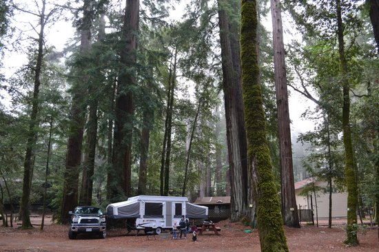 Redwoods River Resort & Campground: Our campsite!