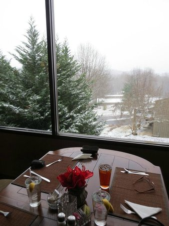 Fontana Village Resort: Dining Rm View