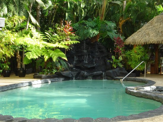 Aqua Bamboo Waikiki : The secluded pool area