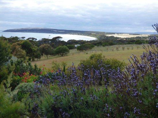 Seascape Lodge on Emu Bay: Afternoon view of Emu Bay