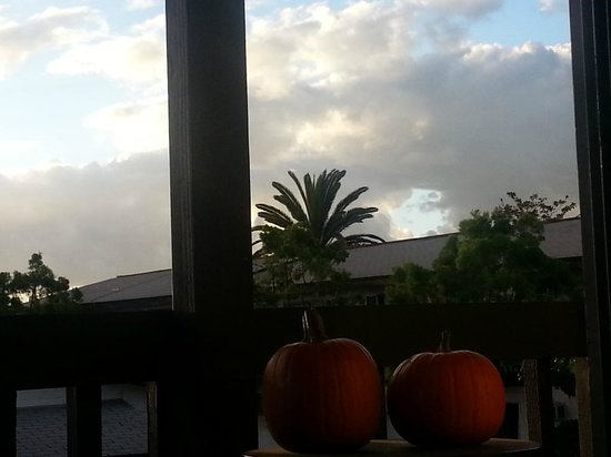 Lemon Tree Hotel and Suites: Pumpkins on our balcony