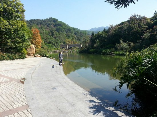 Baiyun Mountain : Botanical gardens