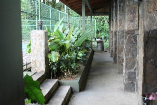 El Establo: Canopy tour area