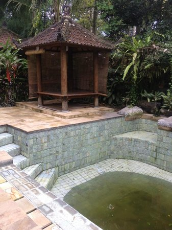 Taman Rahasia Tropical Sanctuary & Spa : old pool