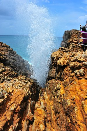 Traverse Lanka Tours: The Blow Hole, Sri Lanka