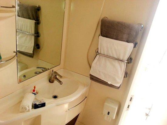 Divine Nilalohita Resorts: super delux maharaja swiss tents bathroom
