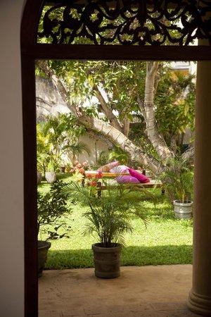 Mango House: Garden