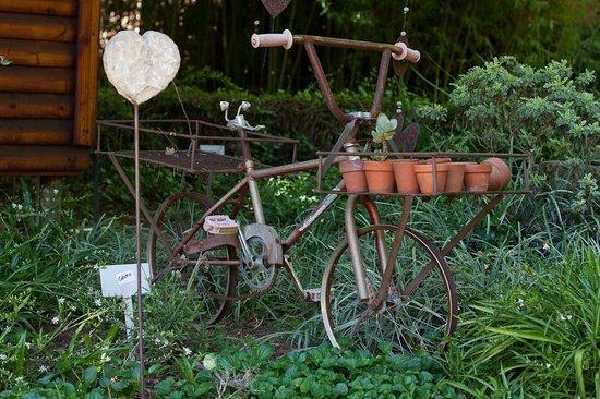 Hands On Retreat Craighall : Hands On Retreat Garden