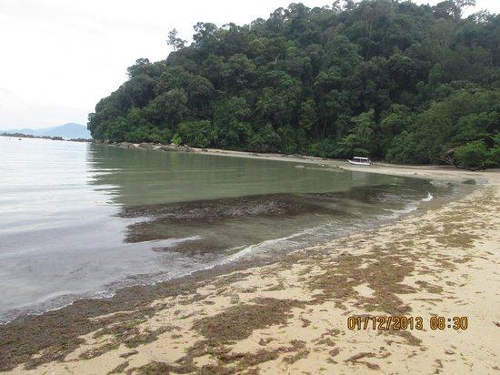 Teluk Dalam Resort: beach