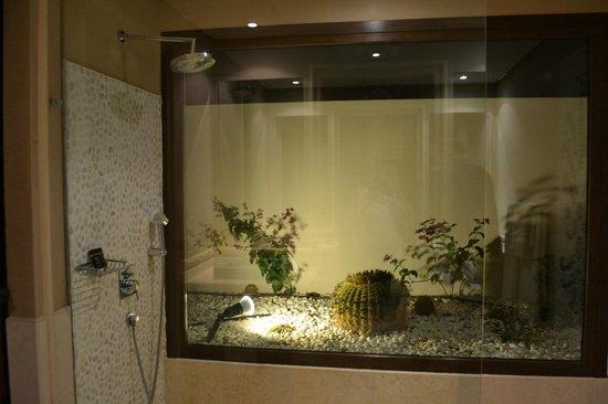 Alondra Villas & Suites: shower