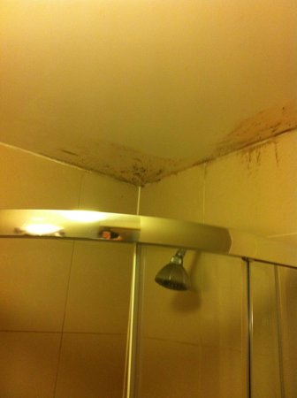 St Joseph Hotel: Shower with mold