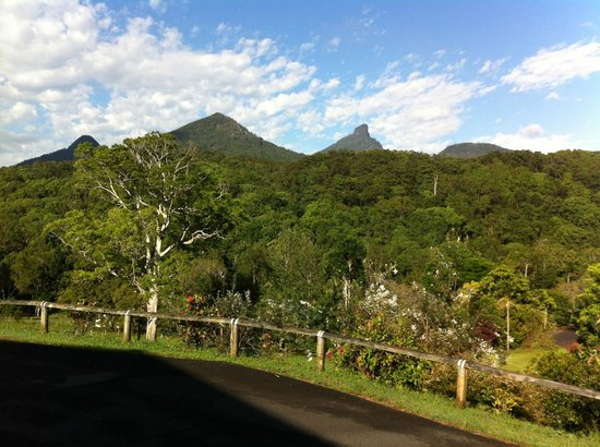 A View of Mt Warning Bed and Breakfast: The view from our veranda.