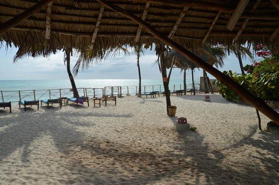 Casa Del Mar Hotel Jambiani : Casa Del Mar