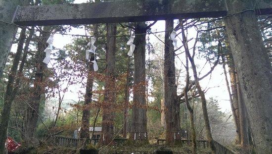 Takinoo Shrine: 三柱