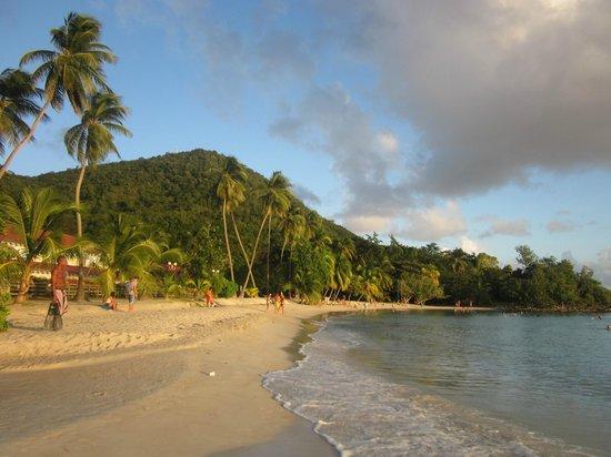 Ti Paradis : Plage de l'Anse Figuier