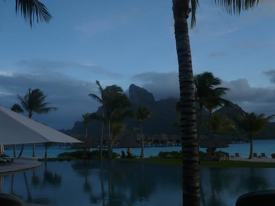 Four Seasons Resort Bora Bora: Palm Trees at the resort