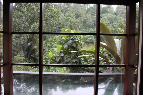 Hanging Gardens of Bali: view from room