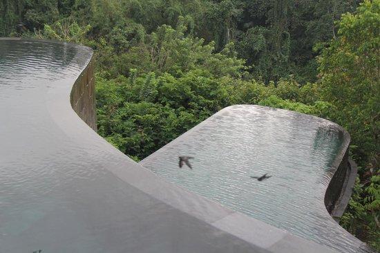 Hanging Gardens of Bali: Two-level infinity pool