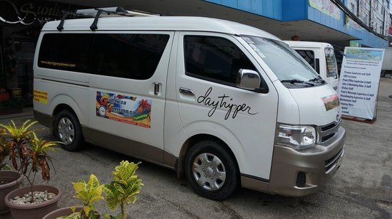 Daytripper Private Chartered Trips