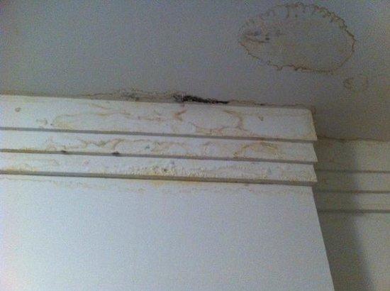 Mercure Apartments Brasilia Lider: Infiltração no teto do quarto