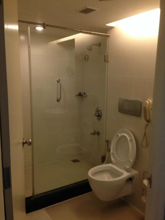 Ramada Bangalore: Bathroom