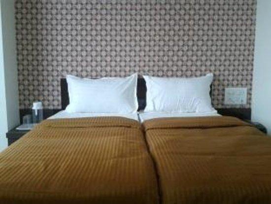 Hotel Skyway Inn : Room