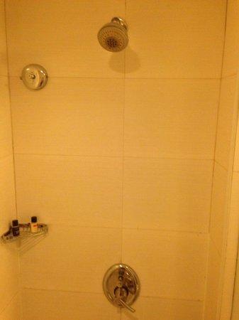 Ramada Bangalore: BathRoom . Neat and Clean